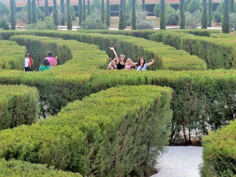 Cyprus Maze
